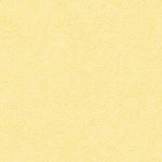 colorit chamois
