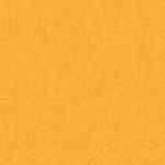 colorit golden yellow