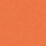 colorit pumpkin