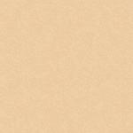 colorit sand brown